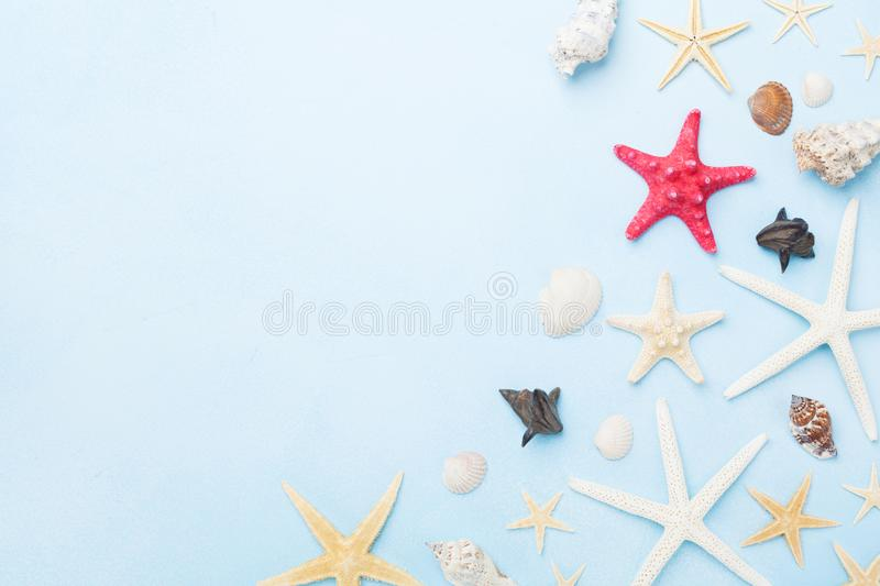 Beautiful composition from seashells and starfish. Summer holidays, travel and trip background. Top view. stock photo