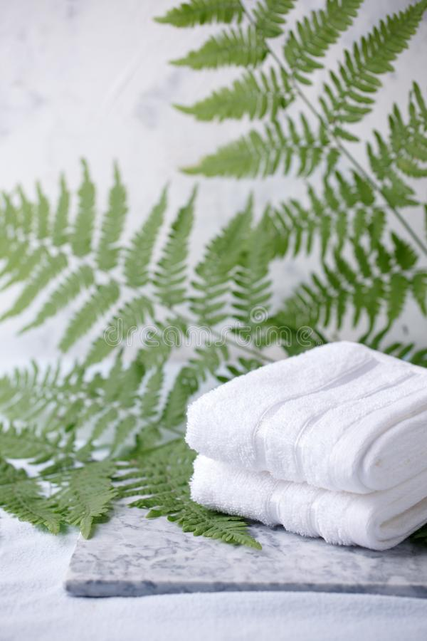 Beautiful composition of spa treatment with white cotton towels on marble plate and fern branches, minimal spa relax concept, eco stock image