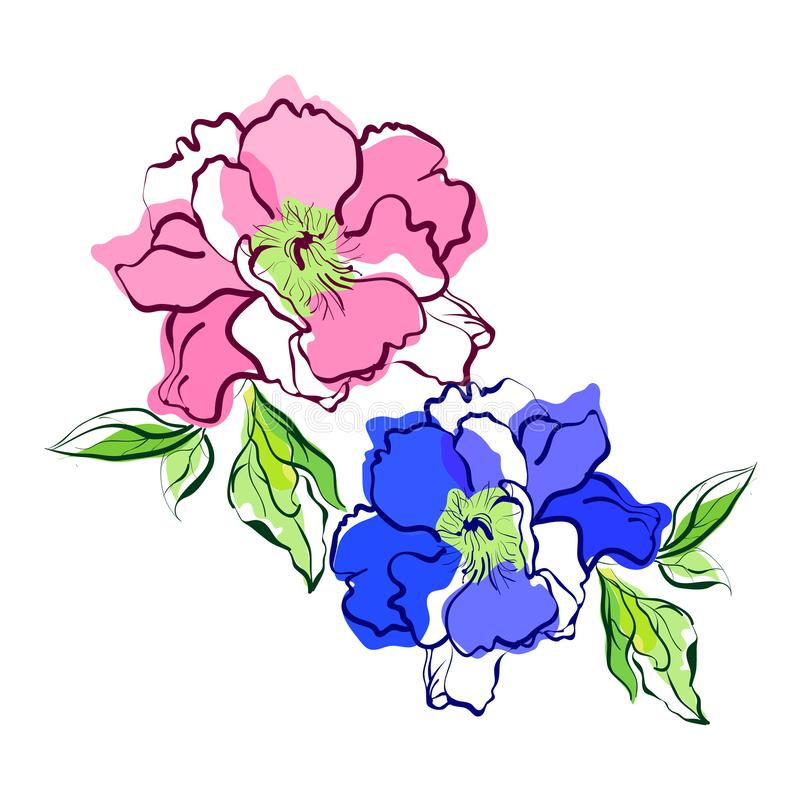 Beautiful composition with wildflowers, pink and blue-purple peony, leaves. Bouquet of flowers, design element isolated on white royalty free illustration