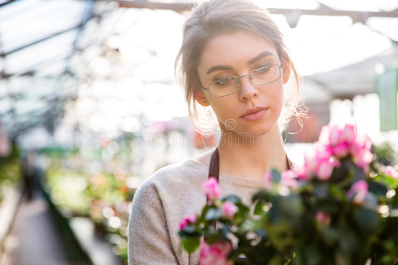 Beautiful concentrated woman florist working with flowers royalty free stock photo