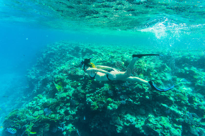 Beautiful coral reef with young freediver woman, underwater life. Copyspace for text stock image