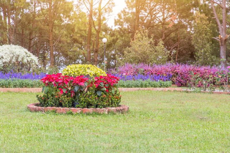 791 Corner Landscaping Photos Free Royalty Free Stock Photos From Dreamstime