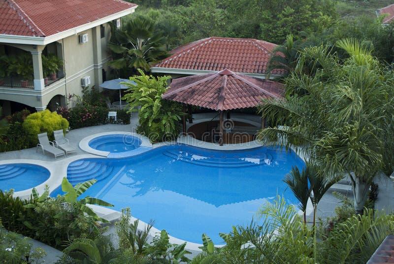 Palm Tree Paradise stock photos