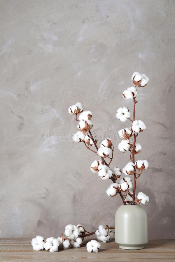Beautiful cotton flowers in vase on wooden table against beige background stock photo