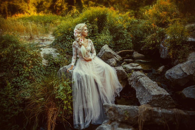 The beautiful countess stock photography