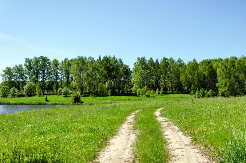 Beautiful Country road in forest stock photo