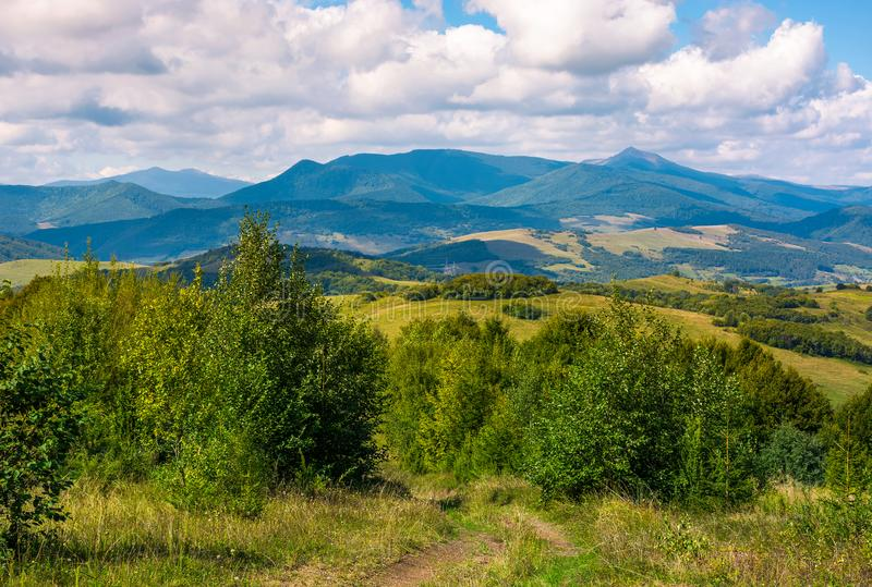 Beautiful countryside of Crapathians royalty free stock images