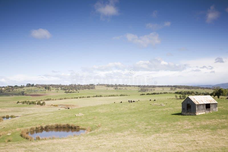 Beautiful Countryside Shack stock image