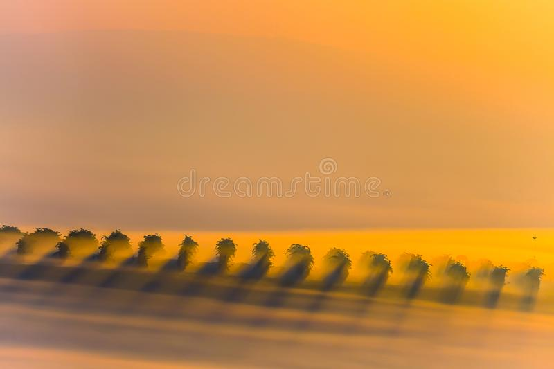 Beautiful countryside vineyards landscape in South Moravia during amazing sunrise with fog. Sun rays through the fog. Autumn agric stock images