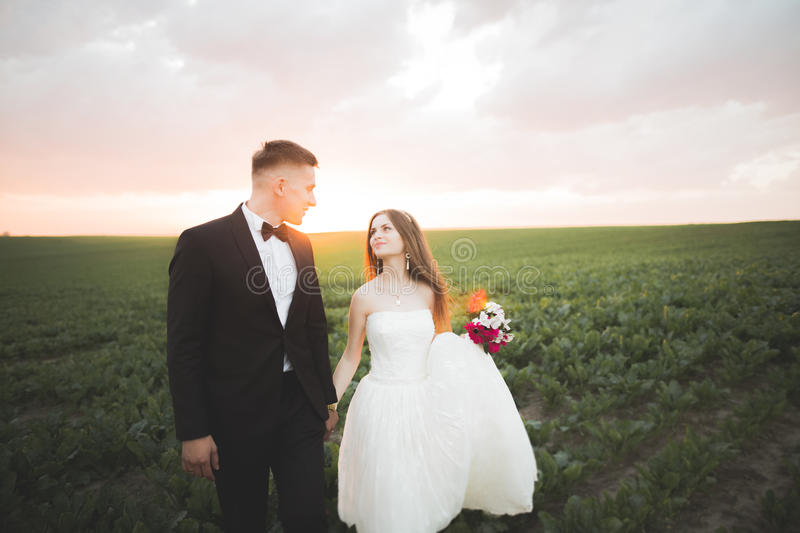 Beautiful couple in field, Lovers or newlywed posing on sunset with perfect sky.  royalty free stock photos