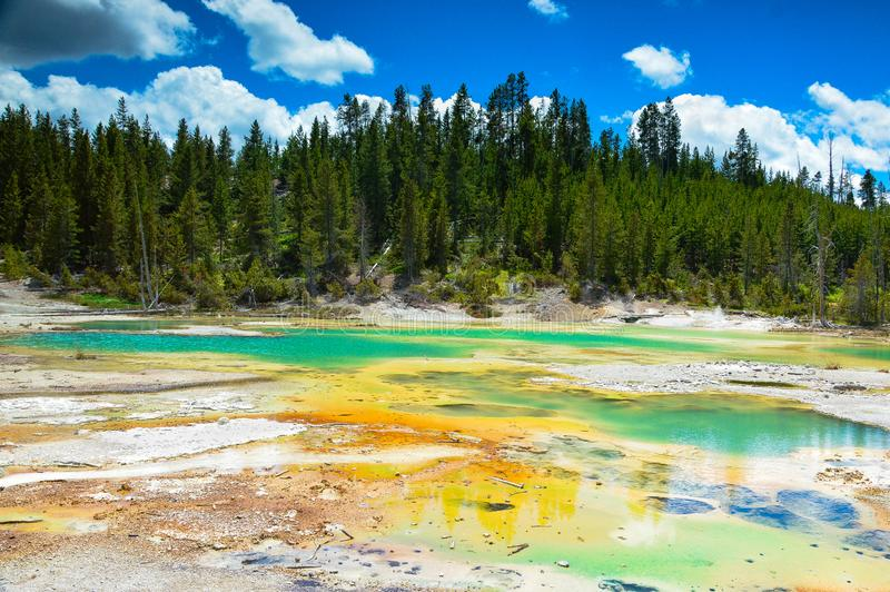 Beautiful Crackling Lake with trees in backgrounds in Norris Geyser Basin, Yellowstone National Park, Wyoming, USA. royalty free stock photo