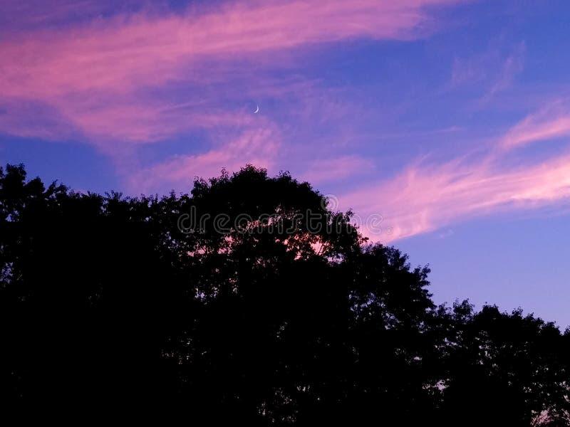 Beautiful Crescent moon over Ohio. Summer night Crescent moon in southeast ohio stock image