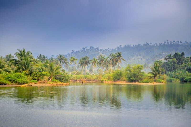 Beautiful Cuban countryside nature royalty free stock photo