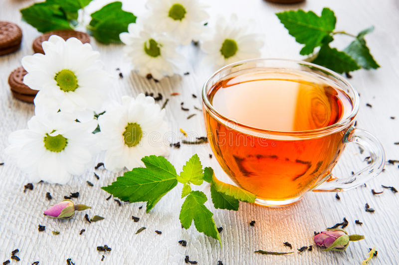 Beautiful cup of black tea with daisies stock photo