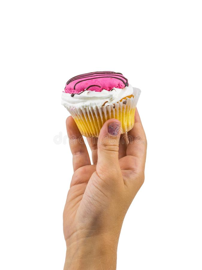 Beautiful cupcake in baby`s hand isolated on white background. stock images