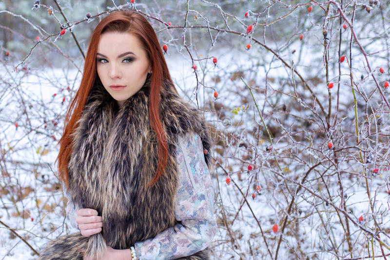 Beautiful cute young girl with red hair walking in a snowy forest among the trees missed first trimester bushes with red yago stock images