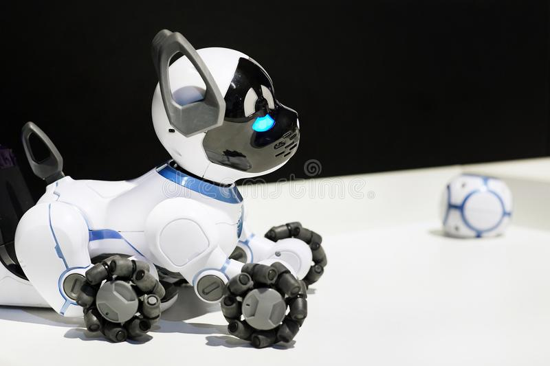 Beautiful cute toy robot dog with a ball. stock photos