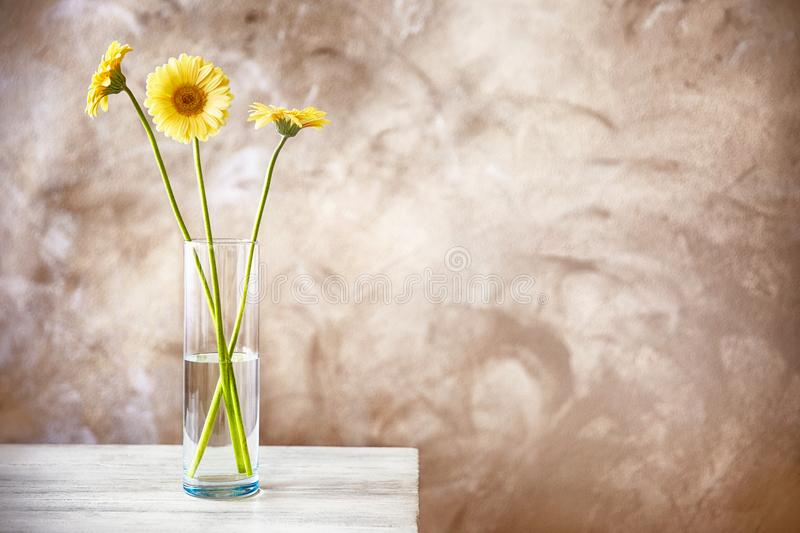 Beautiful Daisy Flowers In Glass Vase On Grey Background Stock Photo