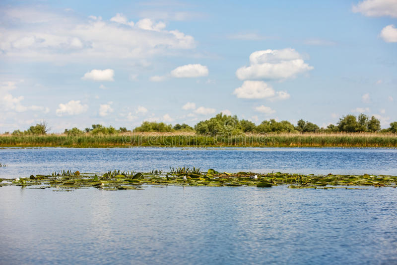 Beautiful Danube Delta stock photography
