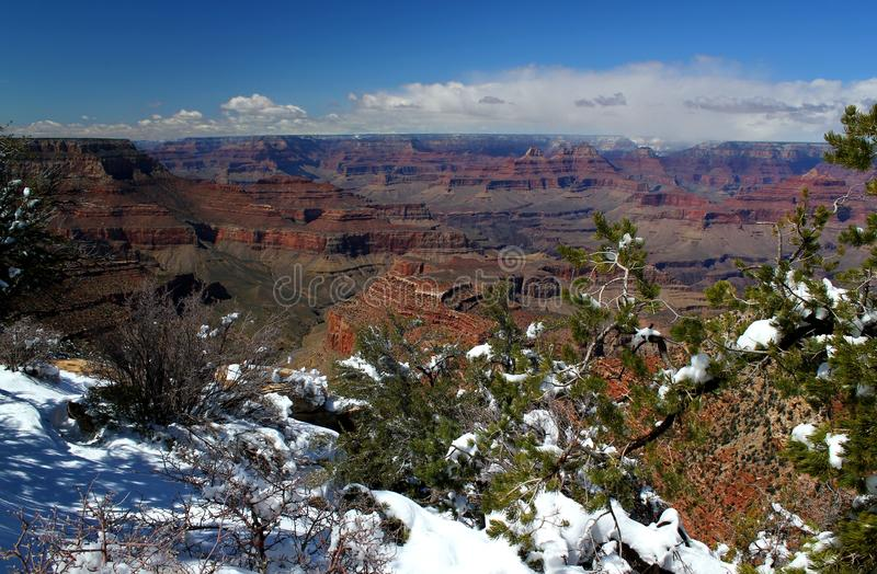 Fresh Winter Snow At Grand Canyon National Park / Arizona / USA. Beautiful day in Grand Canyon Nationalpark with a clear blue sky / Arizona / USA Travelling USA stock photography