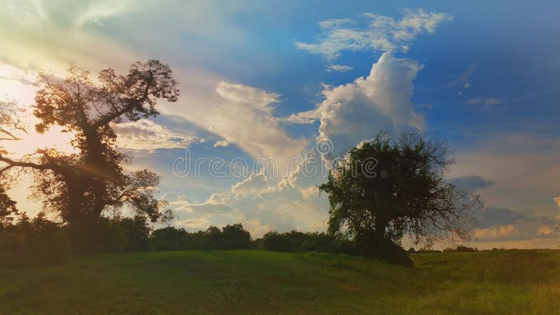 Beautiful day in the park royalty free stock images