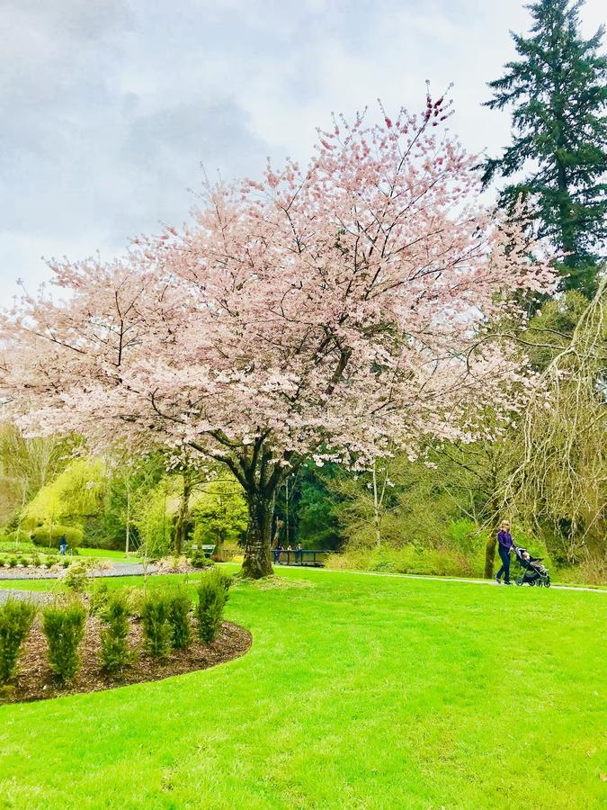 Beautiful day in park royalty free stock images