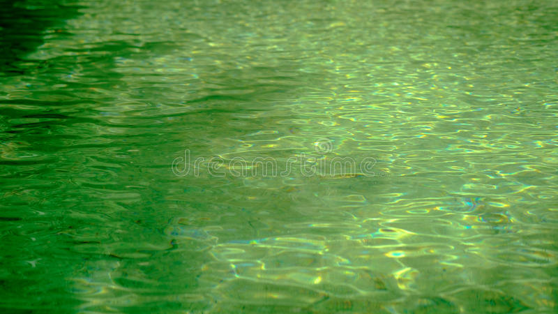 Beautiful deep forest pool. Selective focus on Water surface wit stock image