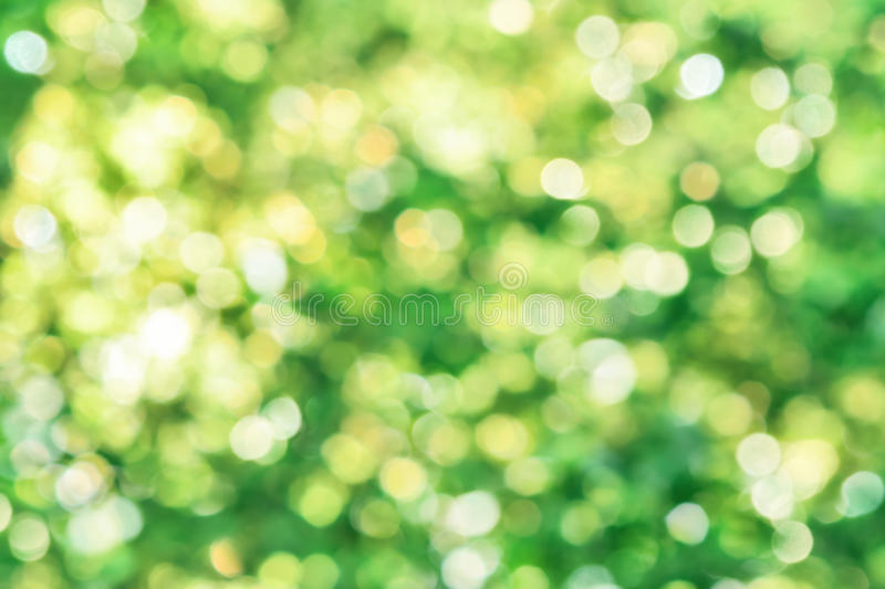 Beautiful defocused highlights in foliage. Shining defocused highlights in foliage create a vibrant bokeh composition, ideal as a nature background royalty free stock images