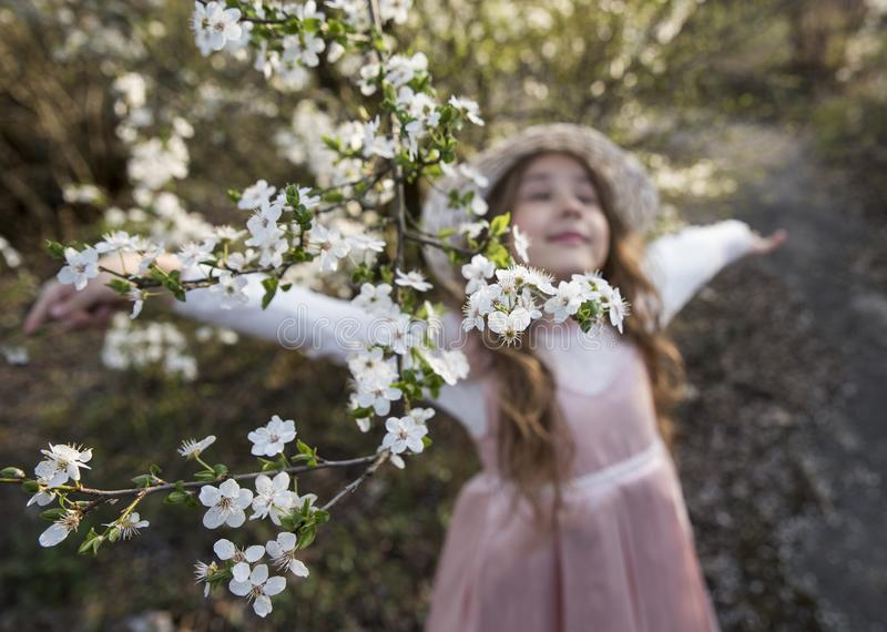 Beautiful defocused little girl enjoy in nature, The spring flowers in the foreground. Beautiful defocused little girl enjoy in nature, The spring white flowers royalty free stock photos