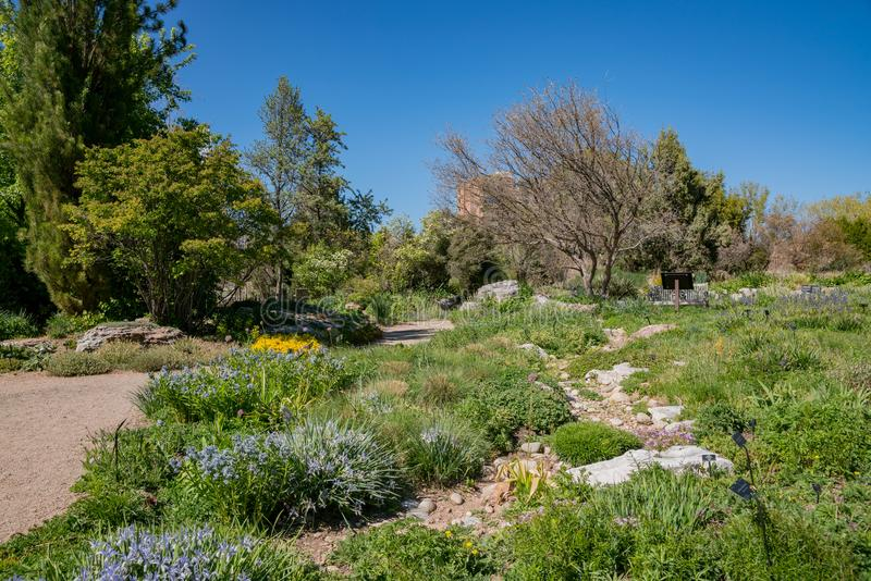 The beautiful Denver Botanic Gardens. Afternoon view of the beautiful Denver Botanic Gardens, Colorado stock image