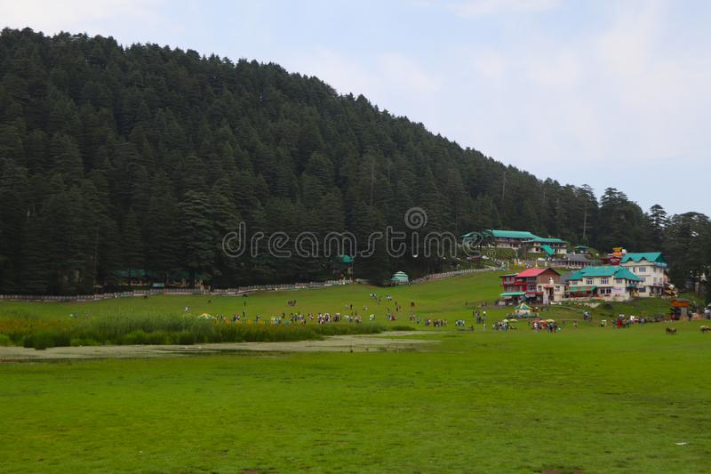 Beautiful deodar tree forest hill in Khajjair, Himachal Pradesh, India. Beautiful view stock photos