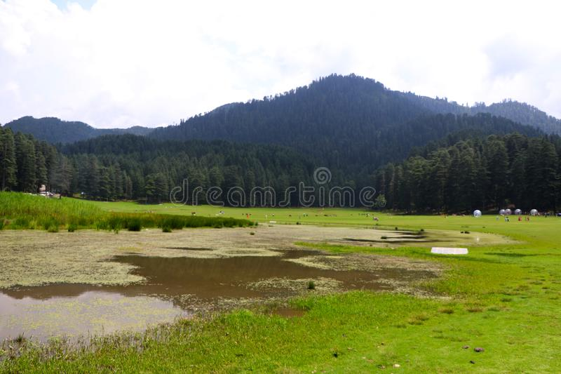 Beautiful deodar tree forest hill in Khajjair, Himachal Pradesh, India. Beautiful view stock photography