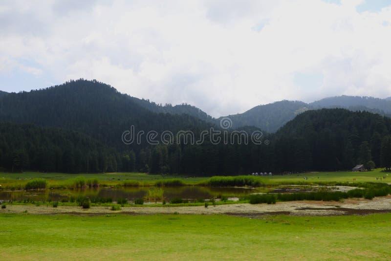 Beautiful deodar tree forest hill in Khajjair, Himachal Pradesh, India. Beautiful view stock images