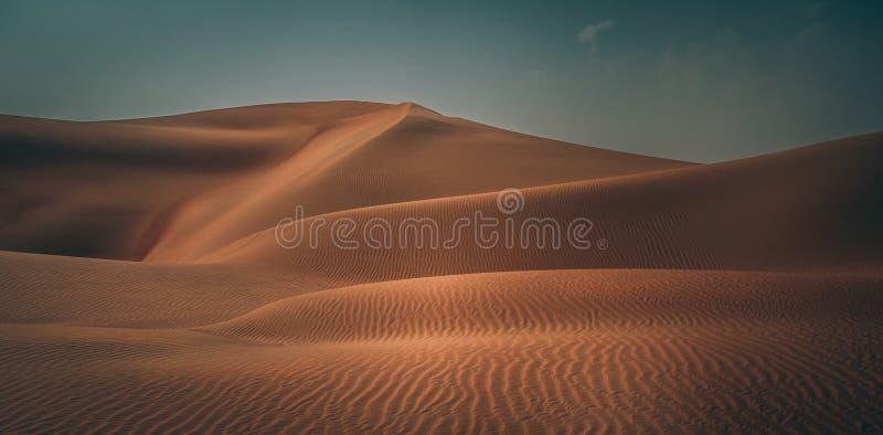 Beautiful desert. Beautiful landscape, Liwa desert in Abu Dhabi, sand dunes background, amazing beauty of wild nature, United Arab Emirates royalty free stock image