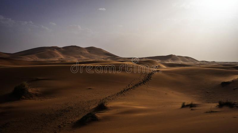 Desert Sahara Morocco. The beautiful desert sahara in morocco stock photography