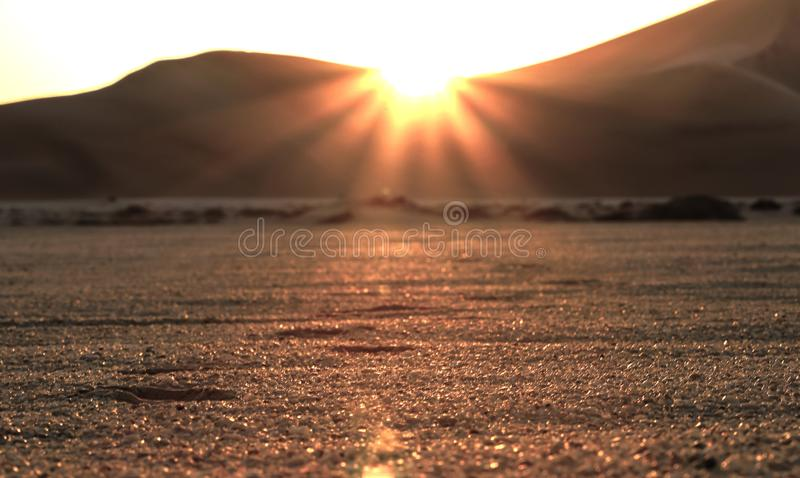 Beautiful desert sunset and footprints in the sand royalty free stock photography