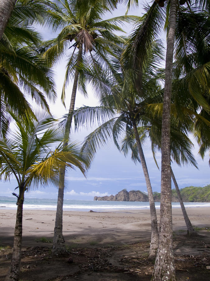 Beautiful Deserted Tropical Beach Royalty Free Stock Photo