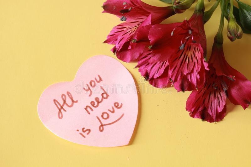 All you need is Love. Beautiful dianthus with pink heart `All you need is love` writing on yellow background - Valentine`s Day stock photography
