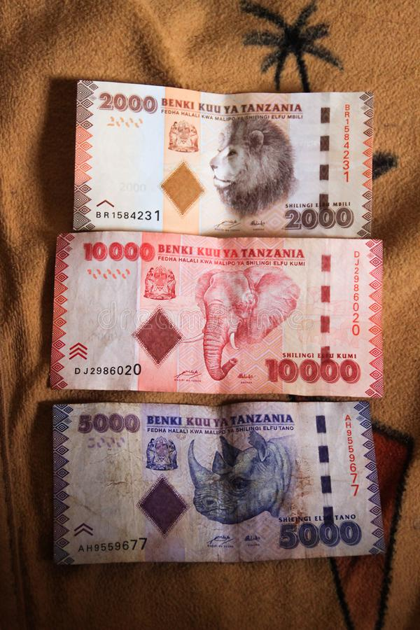 Beautiful different Tanzanian banknotes with animals. Lion, elephant and rhino royalty free stock images