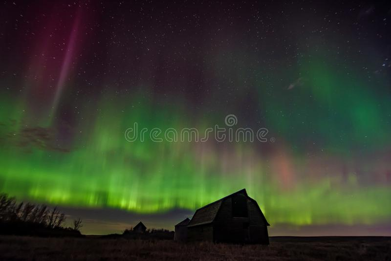 A vibrant prairie northern lights display royalty free stock images