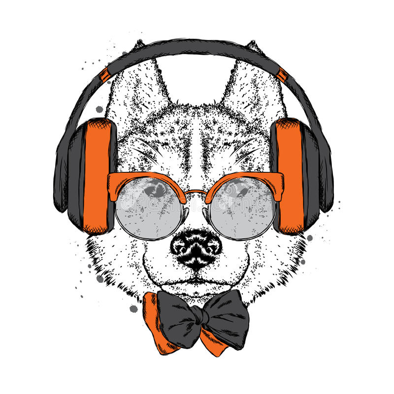 A beautiful dog with headphones, glasses and a tie. Vector illustration for a postcard or poster, print on clothes. Purebred puppy stock illustration