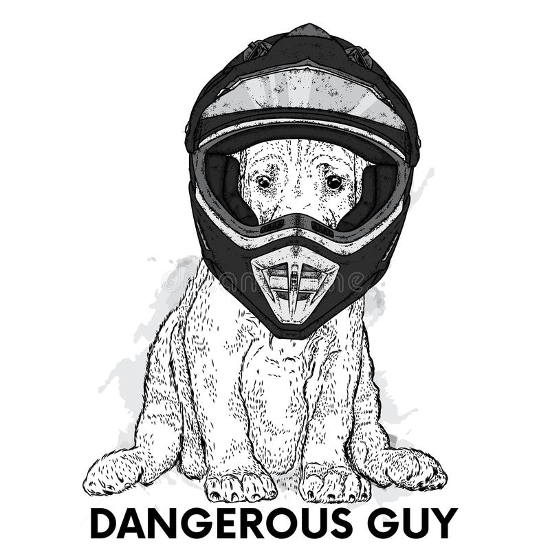 A beautiful dog in a motorcycle helmet. Purebred puppy. Vector illustration for a postcard or a poster. stock illustration