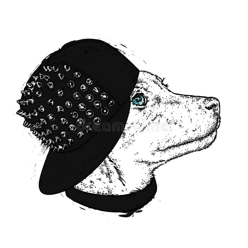 A beautiful dog in a stylish cap with spikes. Cute puppy. Vector illustration for a postcard or a poster, print for clothes.  vector illustration