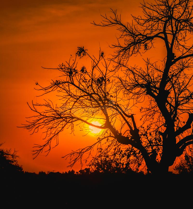 Download Beautiful And Dramatic Sunset In Africa Stock Photo