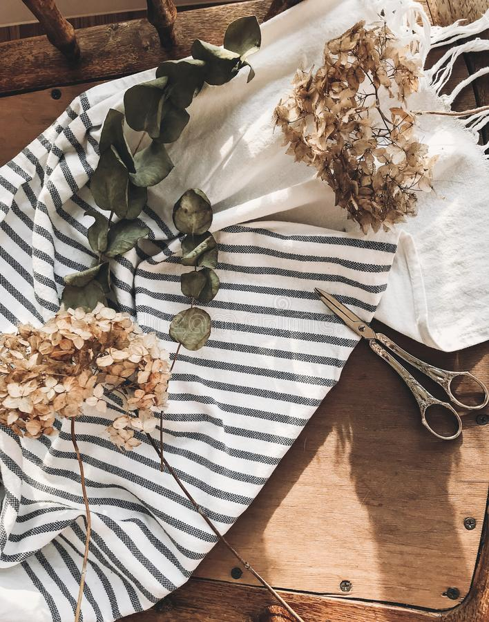Beautiful dried hydrangea, eucalyptus, scissors and linen fabric on rustic wooden chair, rural still life flat lay. Phone photo stock image