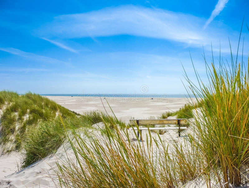 Beautiful dune landscape and long beach at North Sea. Beautiful dune landscape and long beach on the island of Amrum at North Sea, Schleswig-Holstein, Germany royalty free stock images