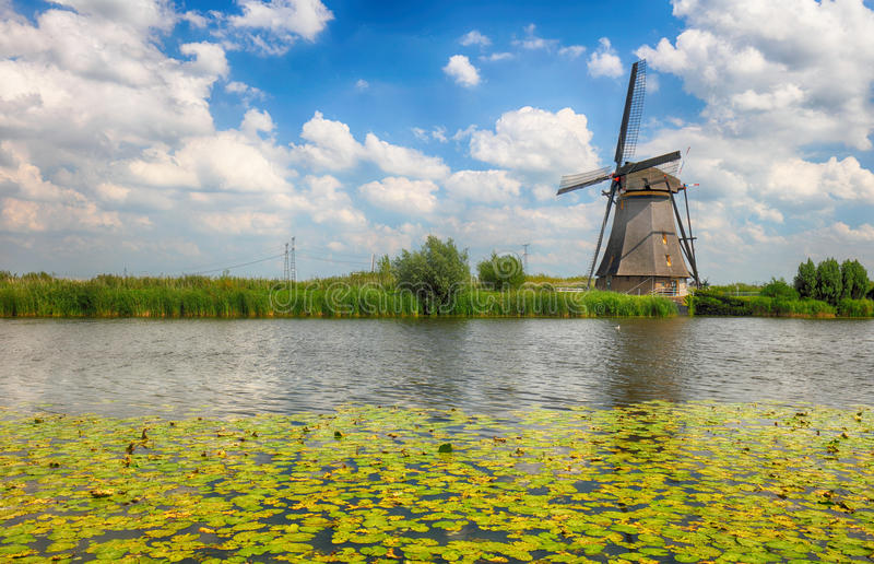 Beautiful dutch windmill landscape at Kinderdijk in the Netherlands royalty free stock photos