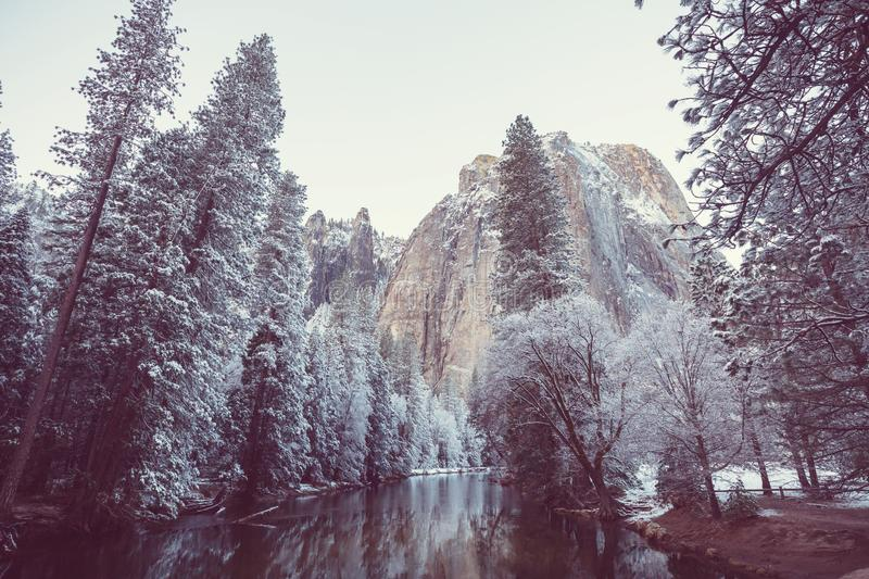 Early spring in Yosemite royalty free stock photography