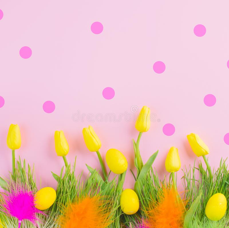 Beautiful Easter bright vivid spring blooming tulip flowers, colorful eggs, fresh grass and colourful feathers over pink polka dot stock photos