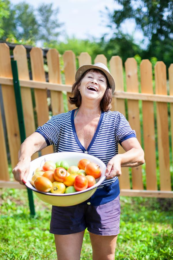 Old woman and tomatoes stock photos